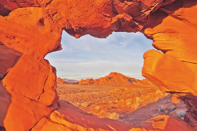 McChesney Mojave