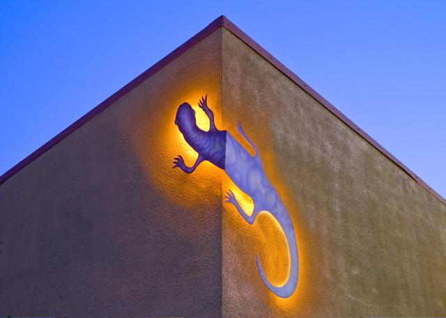 Museum Gecko