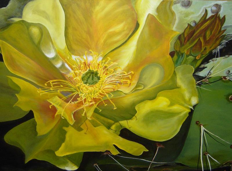 michael's cactus