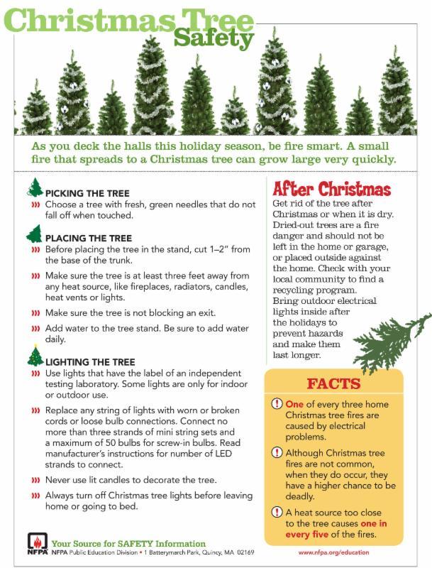 xmas tree safety