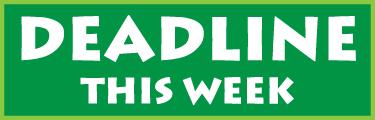 deadline this week icon