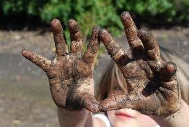 dirty hands from garden