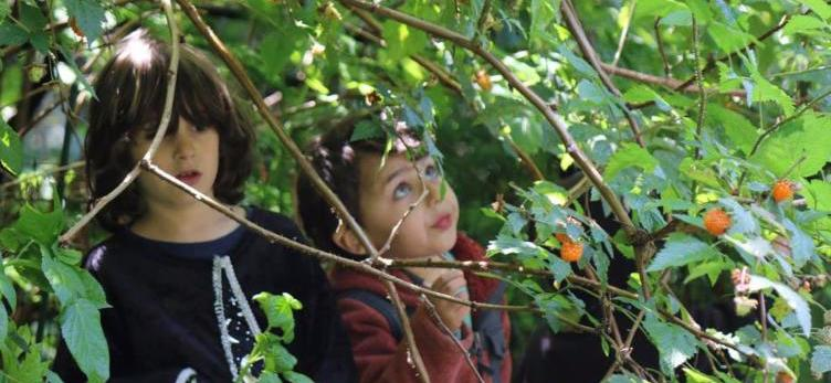 Kids and salmonberry