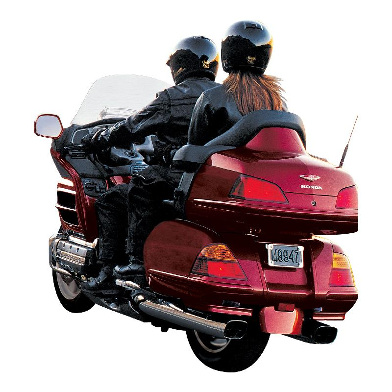 goldwing back