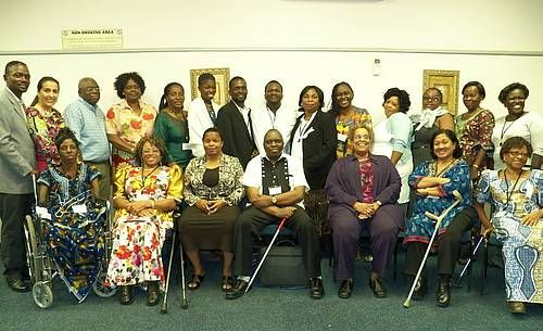 Participants at the EDAN conference, some with canes and wheelchairs