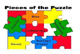 pieces of the puzzle describing characteristics of autism