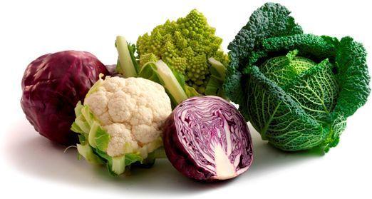 veg group