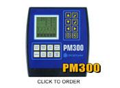 PM300
