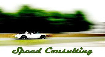 Speed Consulting