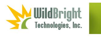 Wildbright Logo