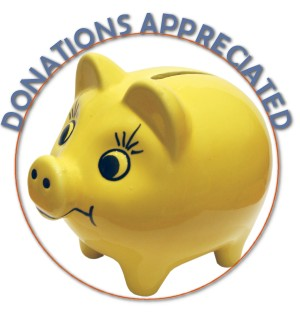 Donations Piggy Bank
