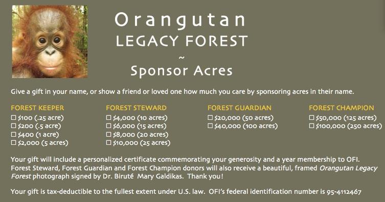 Orangutan Legacy Forest Giving Levels