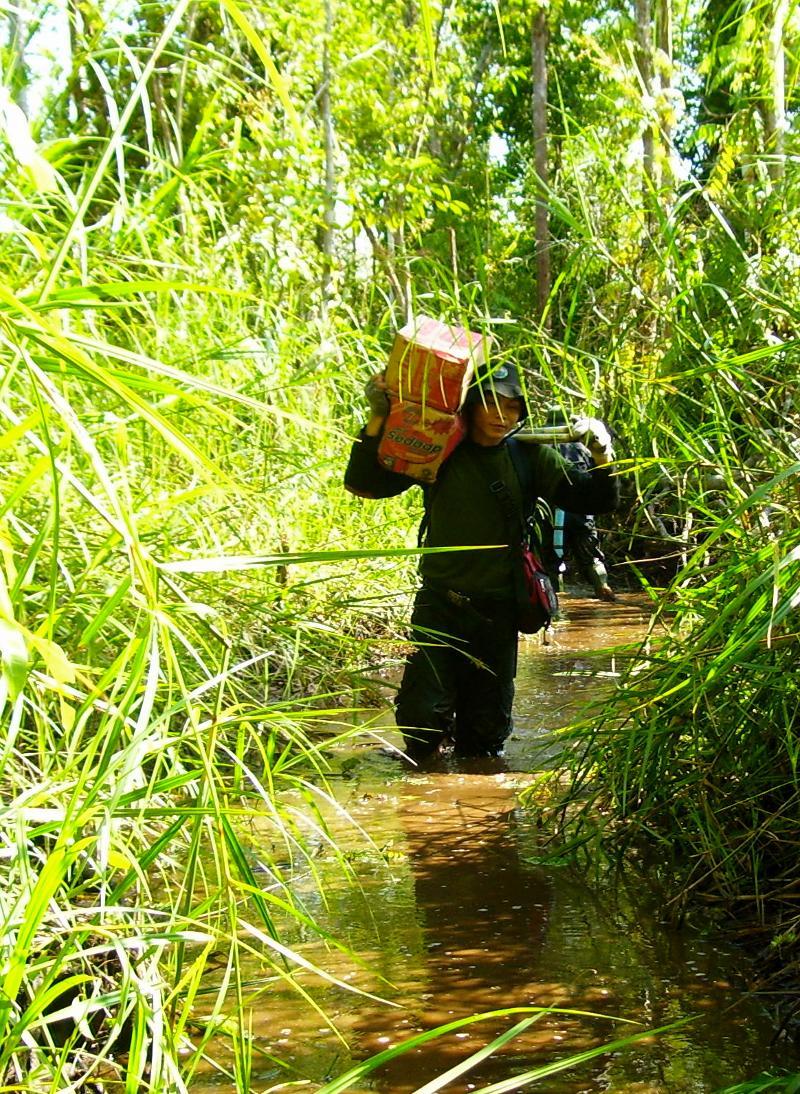OFI staff make their way through the wet jungle.
