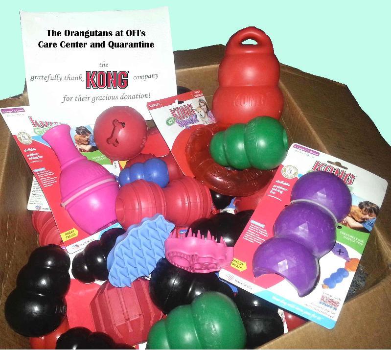 Box of Kong Toys