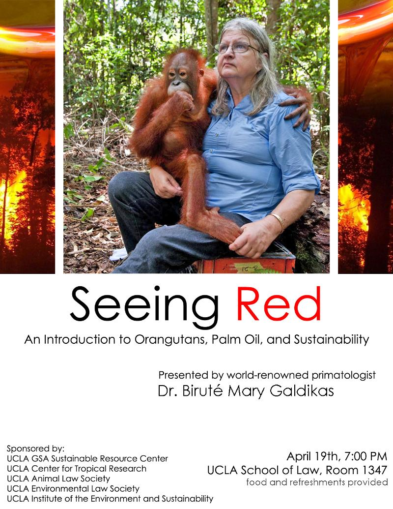 Seeing Red Flyer