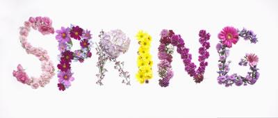 Spring Marketing Strategies