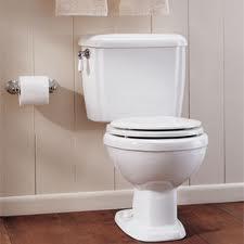 Leaky Toilet