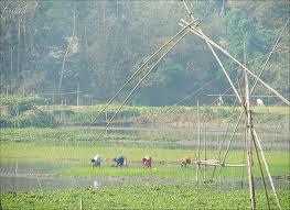 Kuria Bangladesh