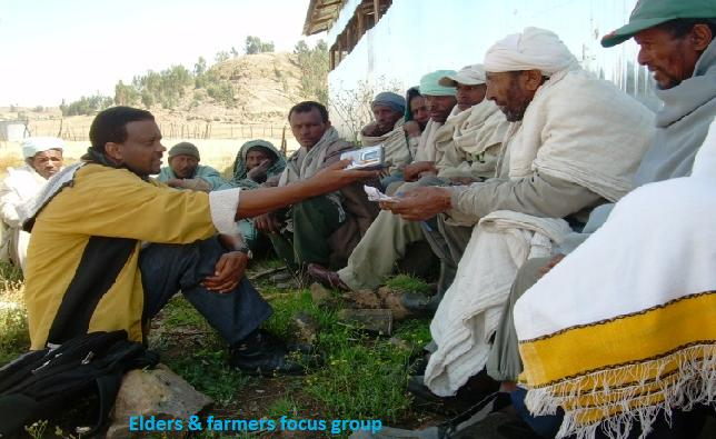 Ethiopia Focus Group