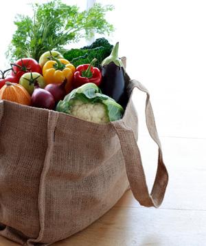 canvas groceries