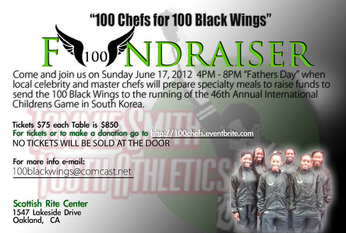 100BM Wings Flyer