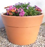 Aqueous Self Watering Planter