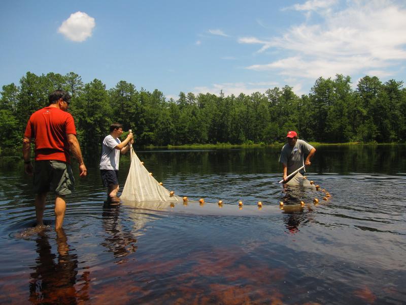 Catching fish at Pakim Pond