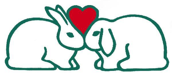 Rabbit Haven color logo
