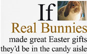Real Rabbits Aren't for Easter