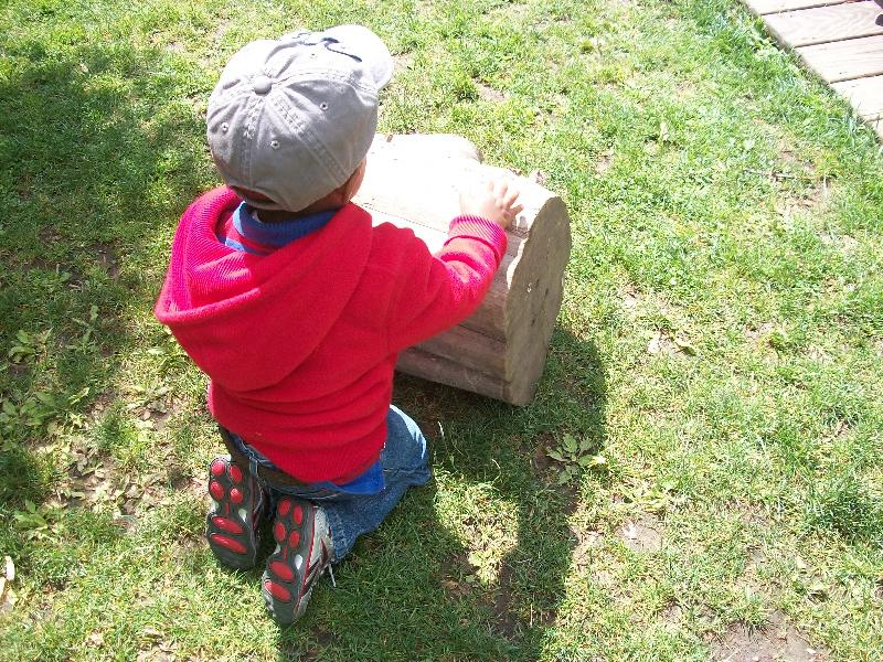 Child with Tree Stump 6.12