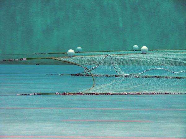 GL Trawling