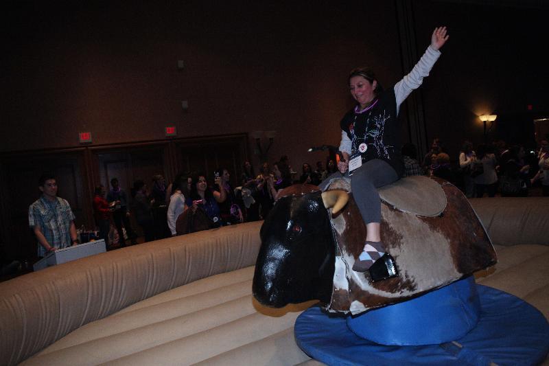 2012 WVC bull