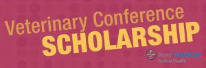 New Bayer Scholarship banner