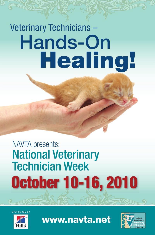 NVTW Hands on Healing 2010