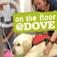 On the Floor @Dove