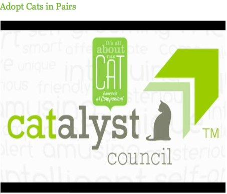CATalyst council logo