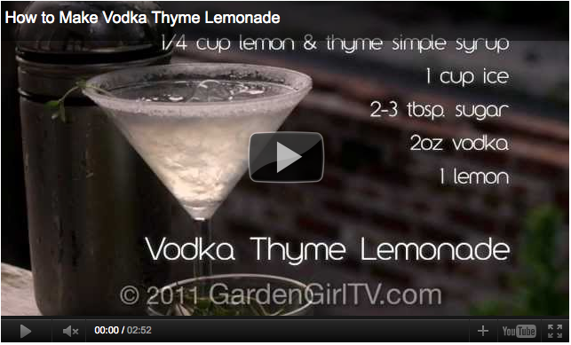 How to Make a Vodka Thyme Lemonade Video