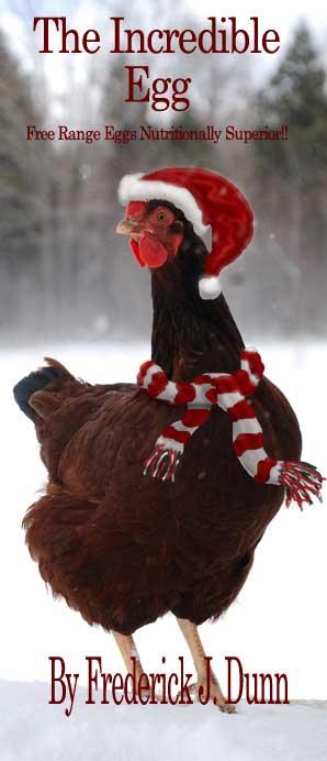 Christmas Hen