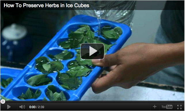 How to Preserve Herbs in Ice Cubes Video