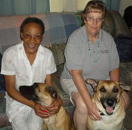 Homesharing Dogs