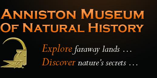 Anniston Museum