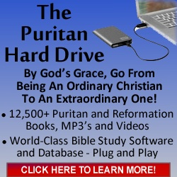 Puritan-Hard-Dr...-250x250-C.jpg