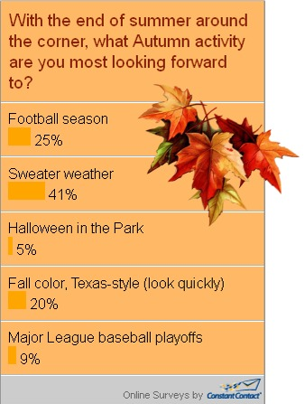Snap Poll Results - Autumn Activities