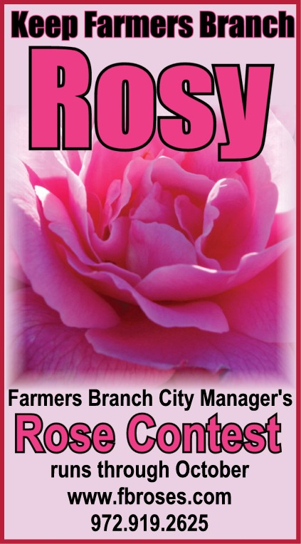 City Manager's Rose Contest