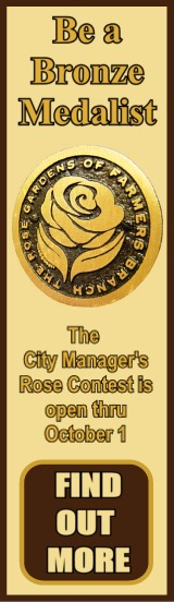 Bronze Medalist Rose Contest Ad