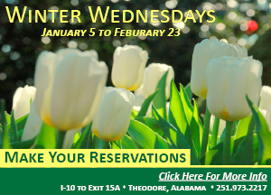 Bellingrath Winter Wednesdays