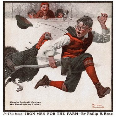 The Great Turkey Chase