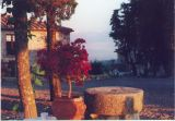 Montebuoni