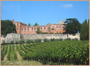 vineyards at Castello di Brolio
