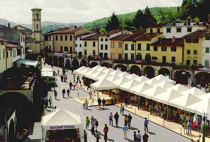 Wine festival Greve